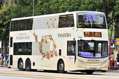 [PANDORA]PANDORA