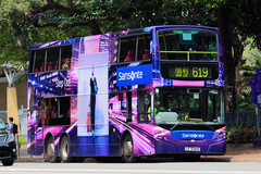 [Samsonite]Step out - 紫色鬧市