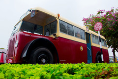 INTBUS @ OTHER 由 985廢青 拍攝