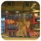 NA8906 @ 887 由 JN4317 於 柏景灣巴士總站出坑梯(柏景灣出坑梯)拍攝
